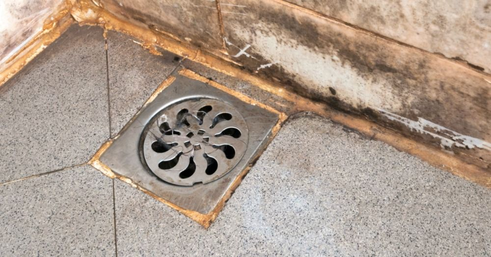 a356a18f473c533d8664d8e5365950e9 - How To Get Something Out Of The Shower Drain