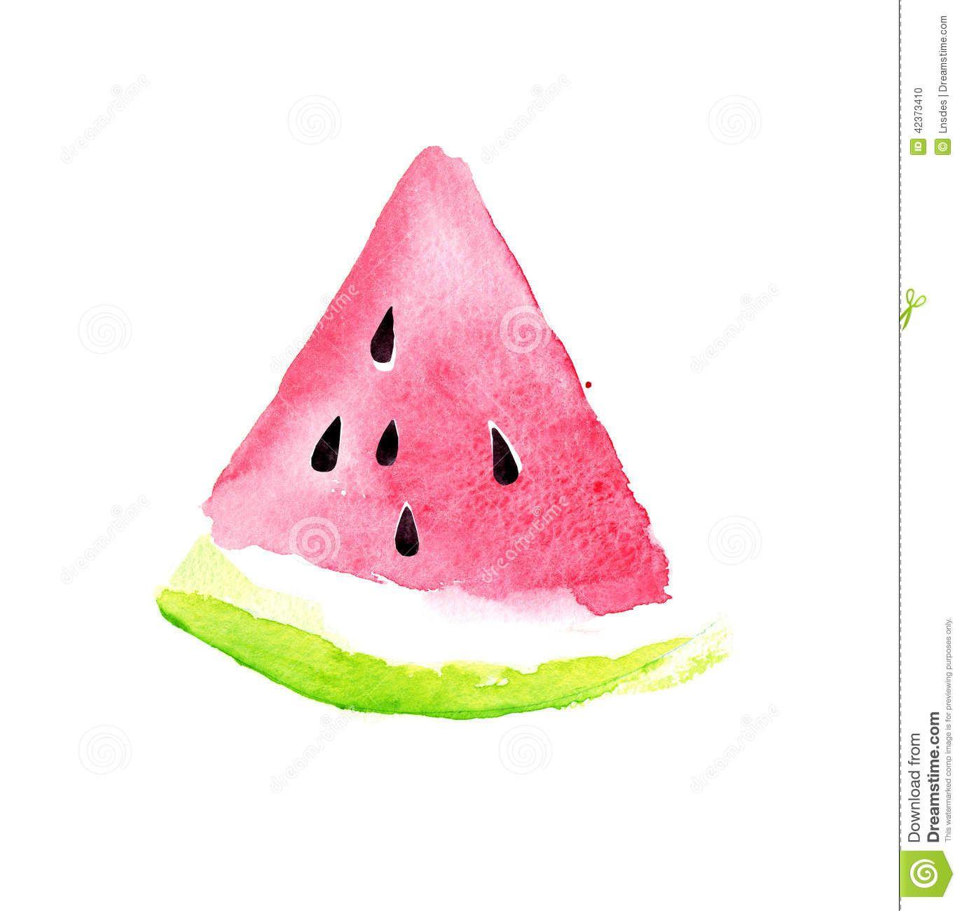 Watermelon Watercolor Google Search Akvarelnye Otkrytki Risunki