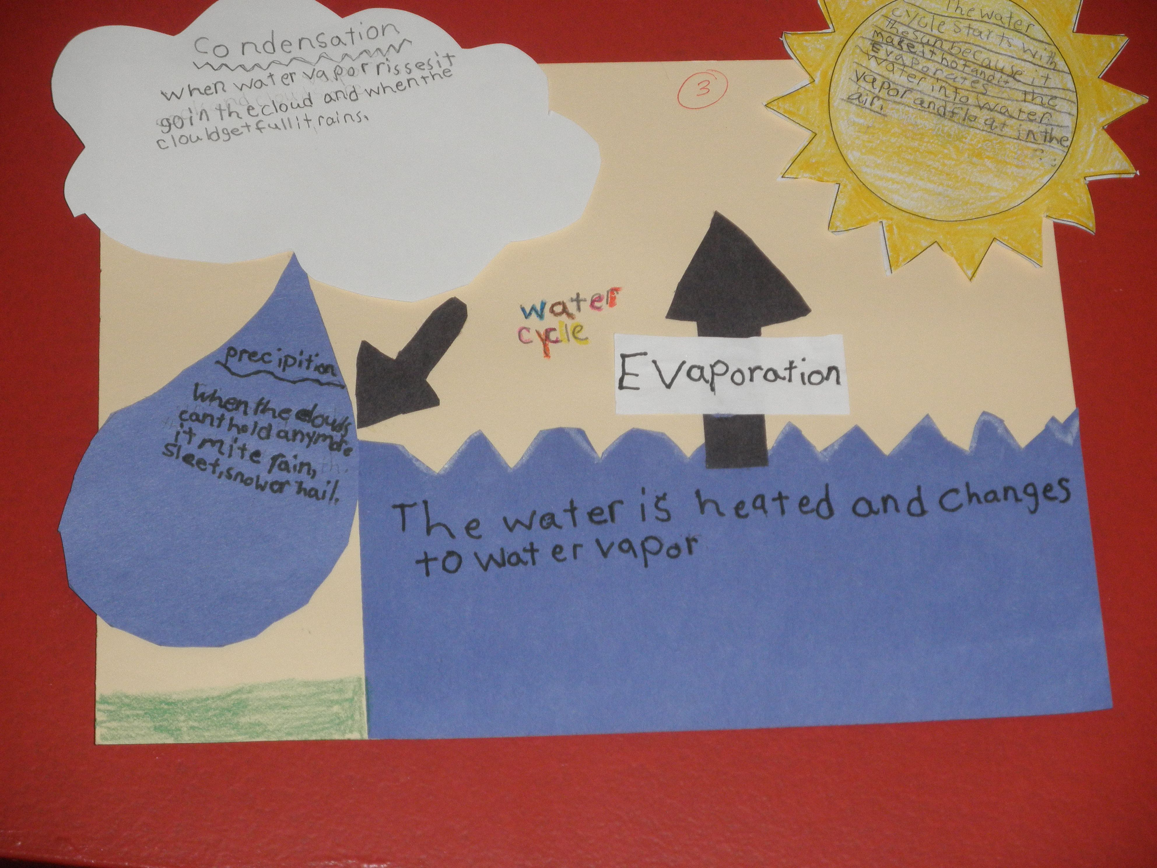 Water Cycle Diagram Project Gonna Try It With My Ell S