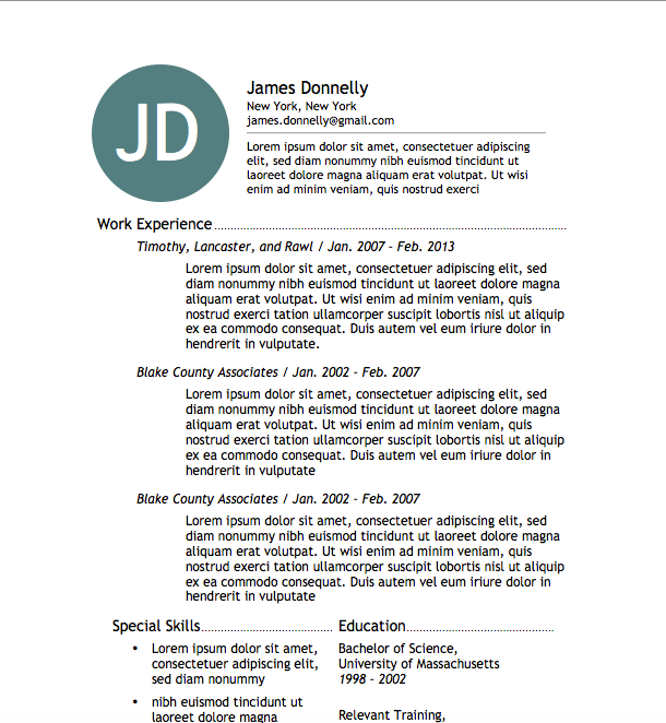 Resume Word Format Free Resume Download Simple Resume 3  Microsoft Word Format