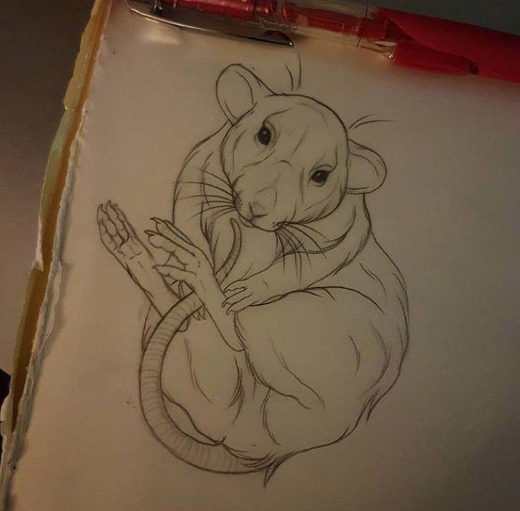 Aimee Bray S Work 3 Rat Tattoo Drawings Adventure Time Tattoo
