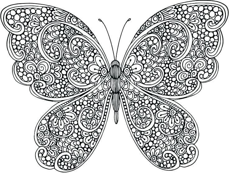 Malvorlagen Schmetterling für Erwachsene - Beste ...