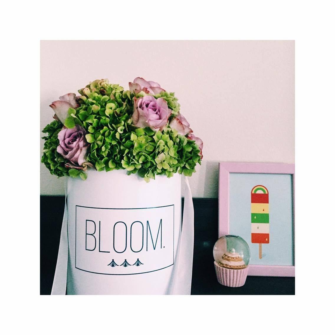 Our girly flowerbox. Flowerbox, cvijece u kutiji
