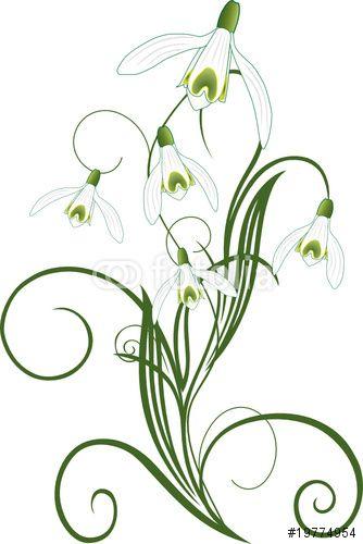 Hand Drawing Snowdrop Flowers Vector Illustration And Clip Art On White Backgrounds Idea For Business Blumenzeichnung Blumen Skizzen Hande Zeichnen