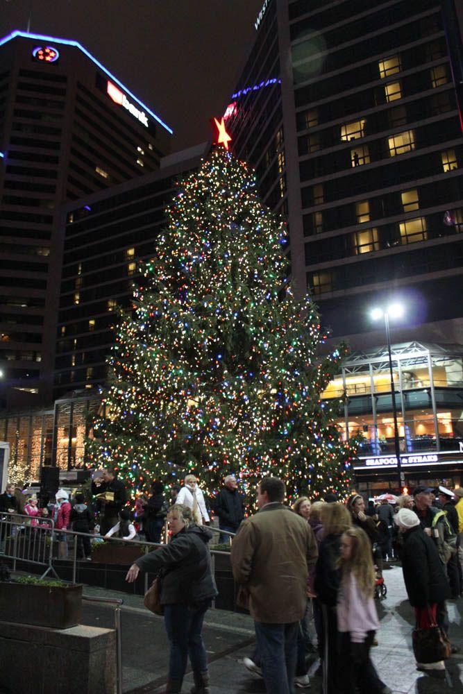 Christmas Things To Do In Cincinnati : christmas, things, cincinnati, Christmas, Downtown, Cincinnati, CINCINNATI, Cincinnati,