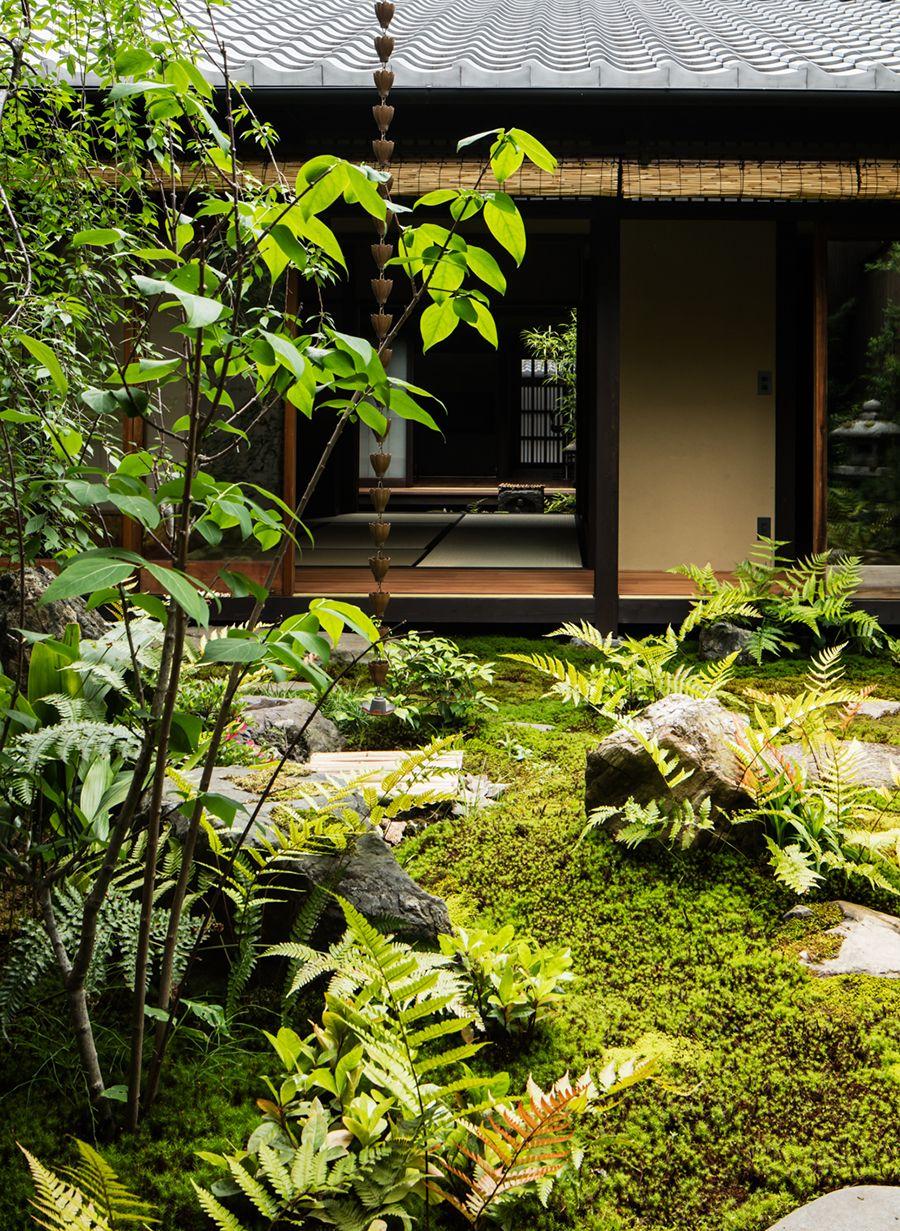 新釜座町の町家 リノベーション 庭 オーガニック菜園 日本庭園