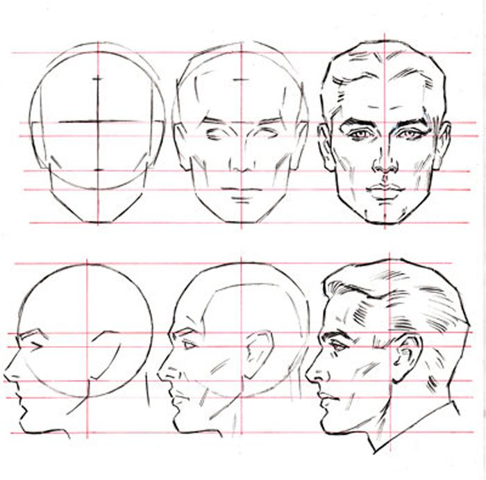 Male Head Heads And Bodies Just Don T Look Right This Is