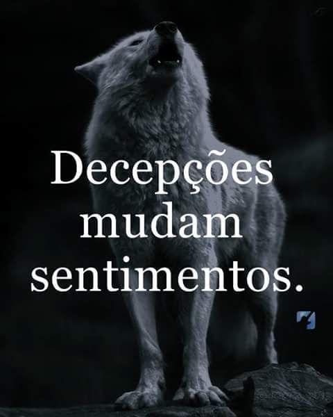 Foto Google Fofuxos Cachorros Pinterest Frases Verdades