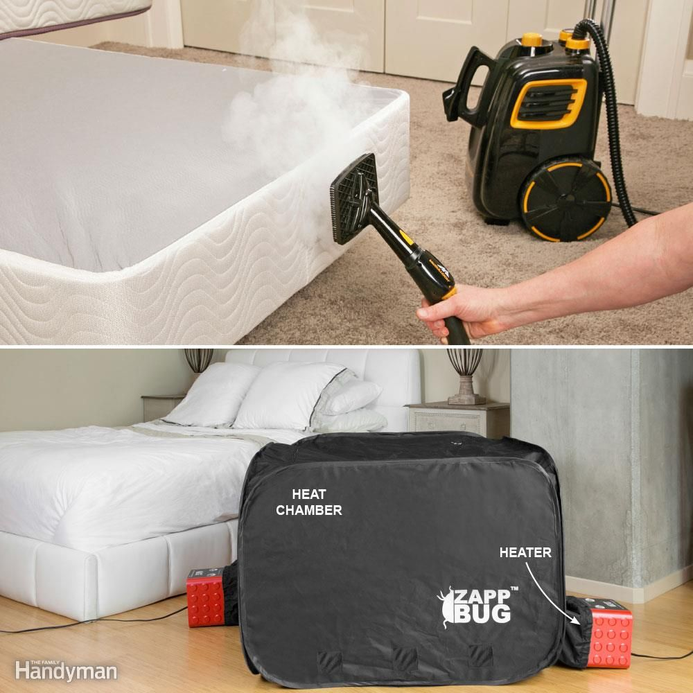 Bed Bug Removal Checklist Outline (With images) Bed bugs