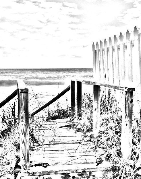 coloring page beach boardwalk digital download adult coloring page coloring page beach scene beach fence image pattern
