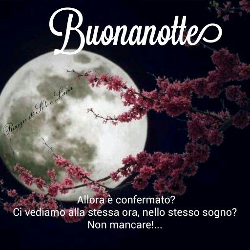 Buonanotte Buona Notte Pinterest Good Night Good Night Quotes