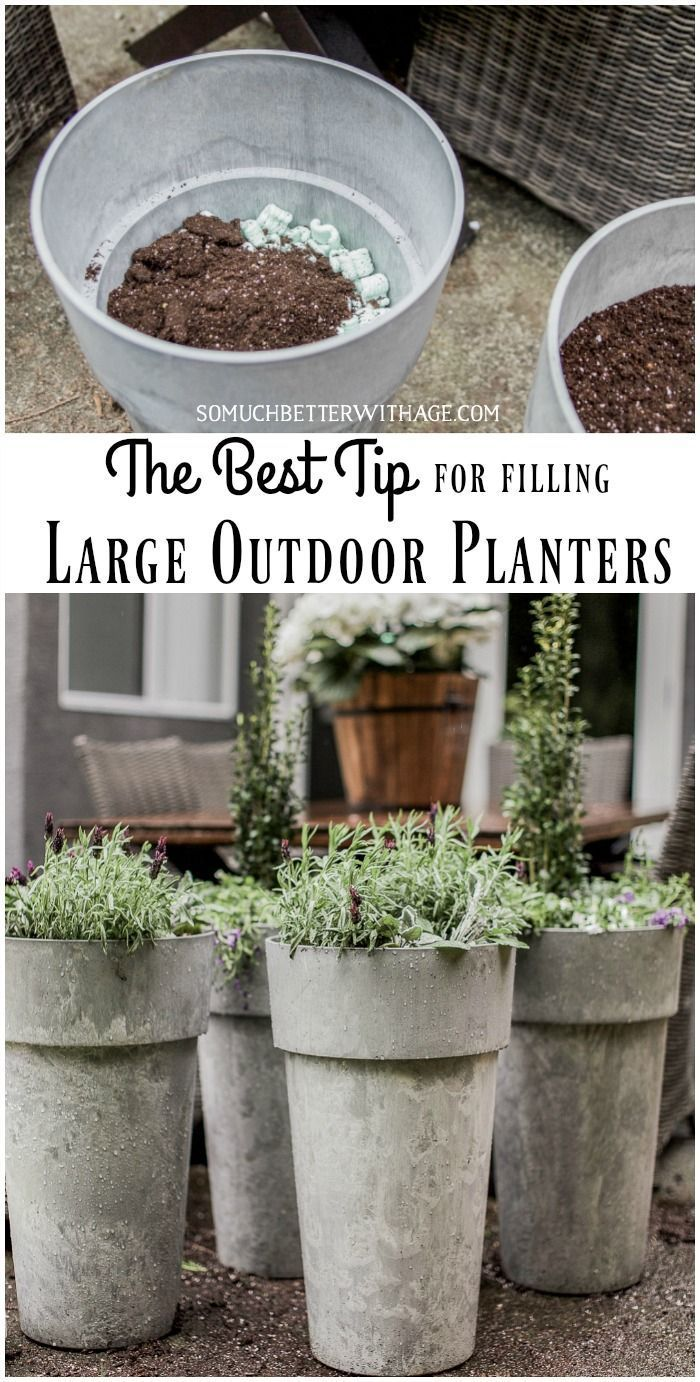 The Best Tip For Filling Large Outdoor Planters Large 400 x 300