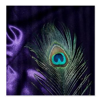 Purple Peacock Feather Shower Curtain