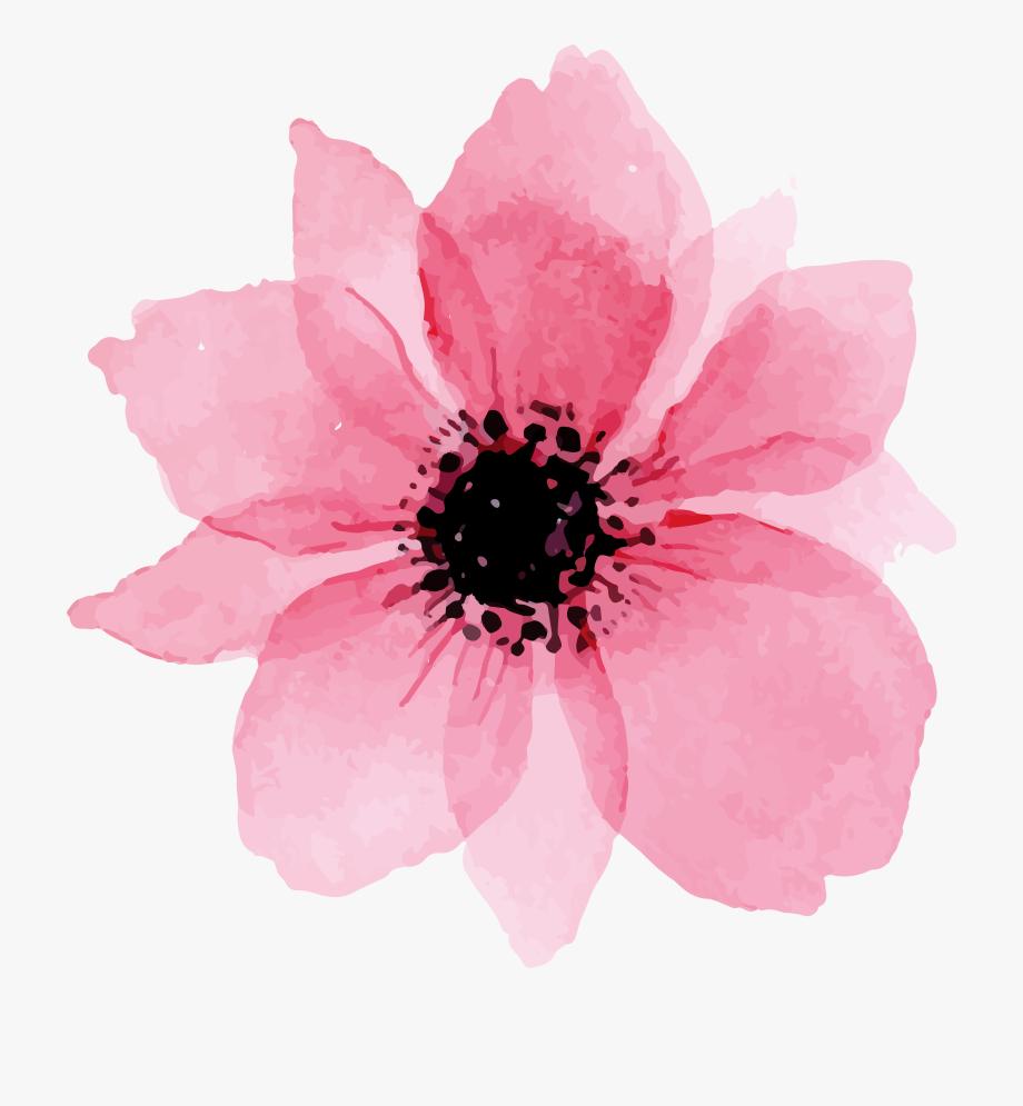 Floral Watercolor Png Watercolor Flower Png Pink Watercolor Flowers Flower Drawing Flower Painting