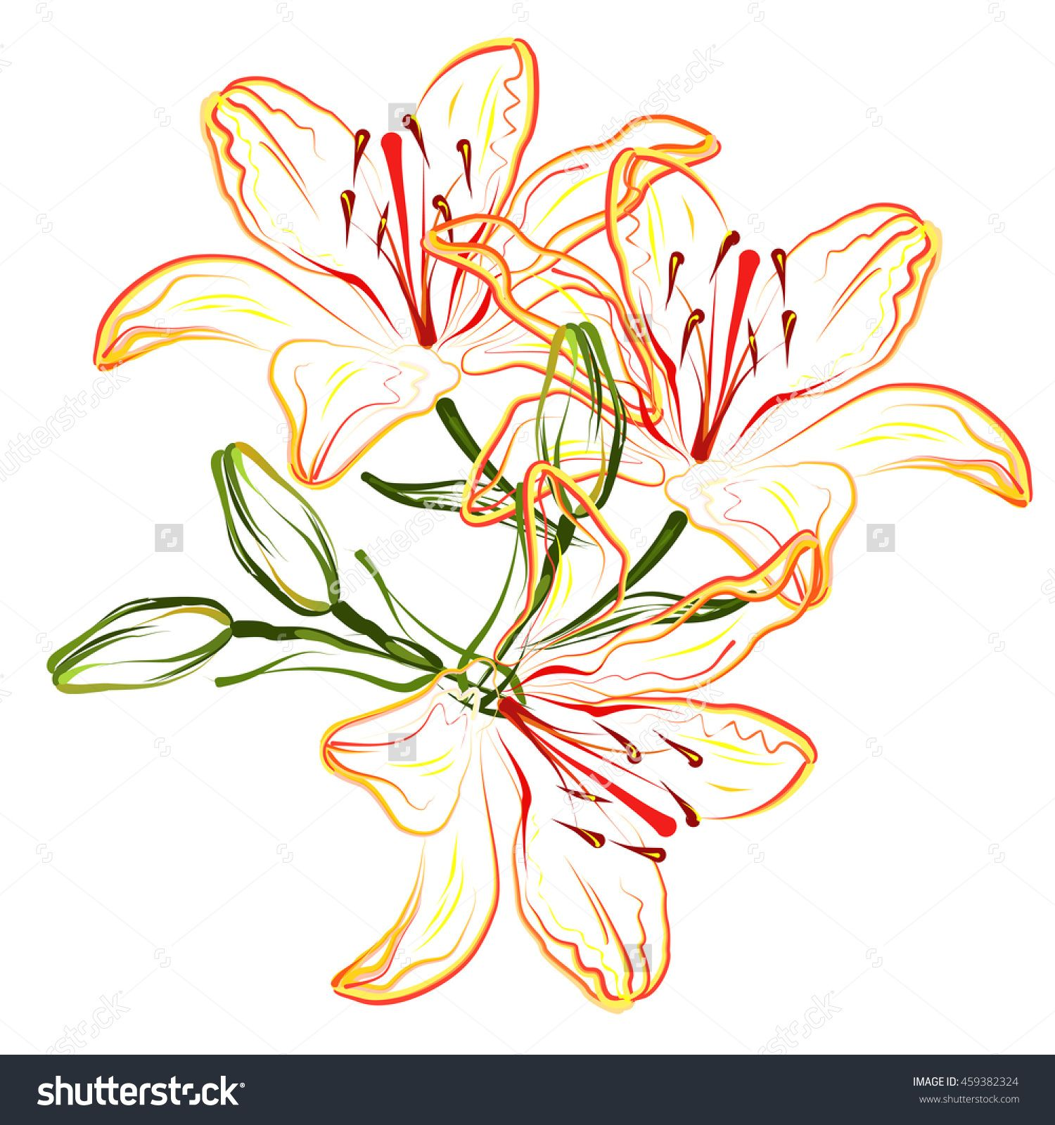 Orange lily. Hand drawn stylized color vector brush sketch