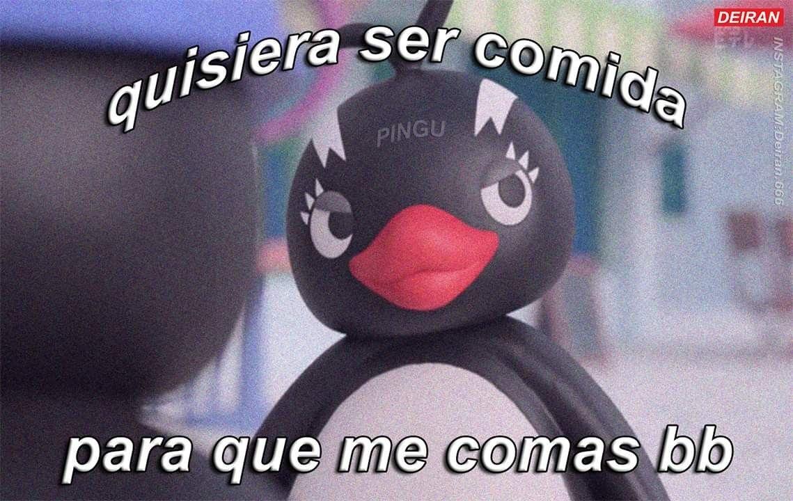 Osi Osi Tragarme Bb 7u7 Memes Romanticos Frases De Pinguinos Memes Divertidos