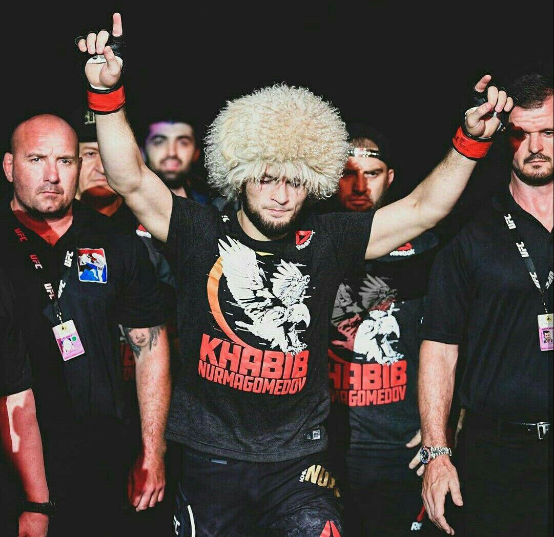 Khabib ufc fighters ufc ufc fight night