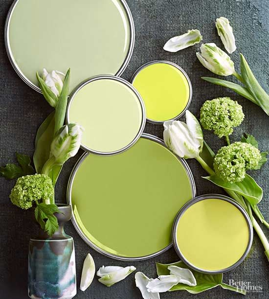 Nature-Inspired Color Palettes | Green palette, Granny smith and ...