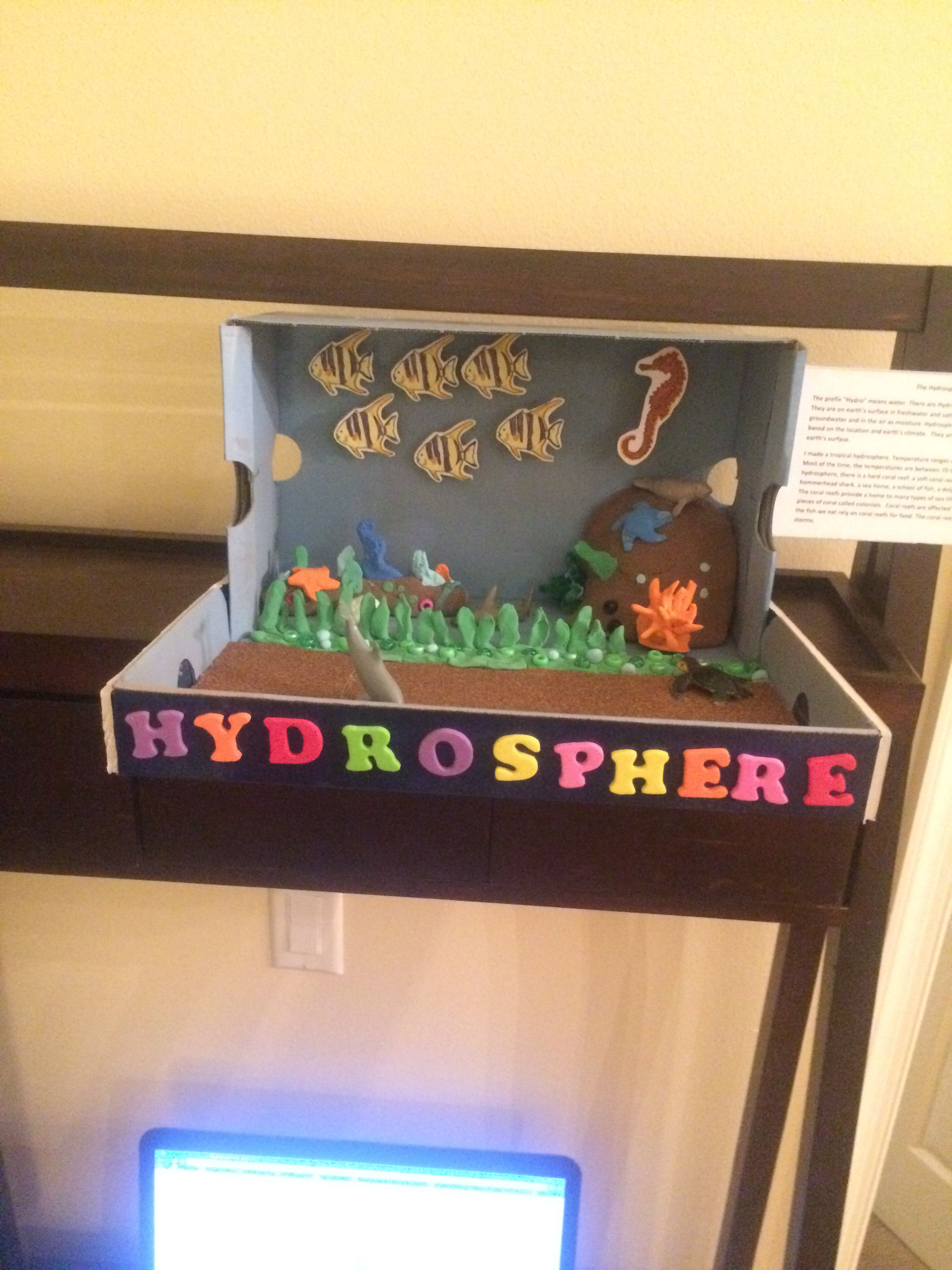 6th grade hydrosphere project | Hydrosphere | Pinterest ...