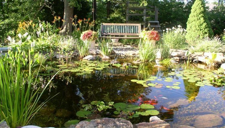 Bassin aquatique de jardin tapes de construction et photos gardens - Construction bassin de jardin ...