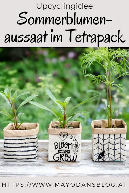 Upcyclingidee - Sommerblumenaussaat im Tetrapack #upcyclingideen