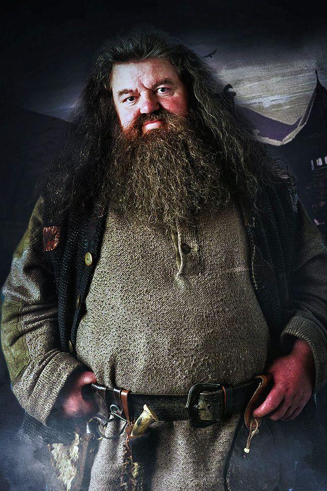 Happy Birthday To Hagrid Robbie Coltrane Snape Harry Potter Harry Potter Severus Snape Harry Potter Costume
