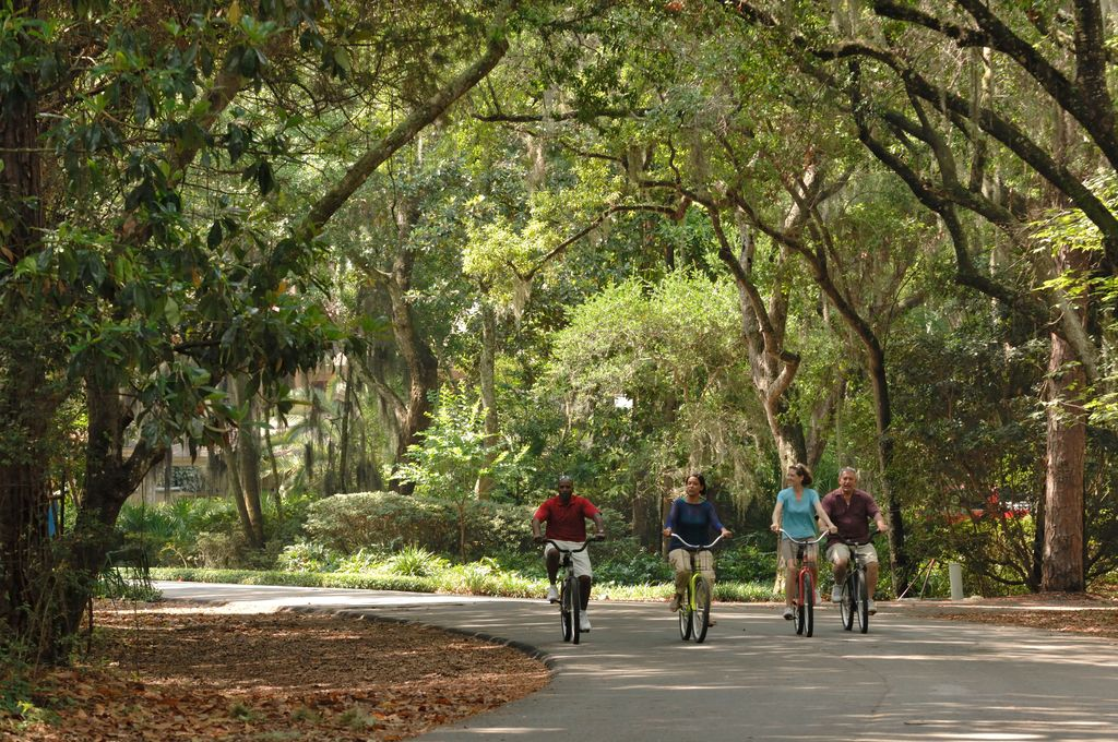 Learn about bicycling on Amelia Island and discover scenic