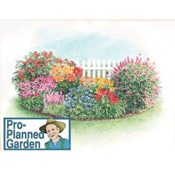 Butterfly And Hummingbird Garden Plan And Plants