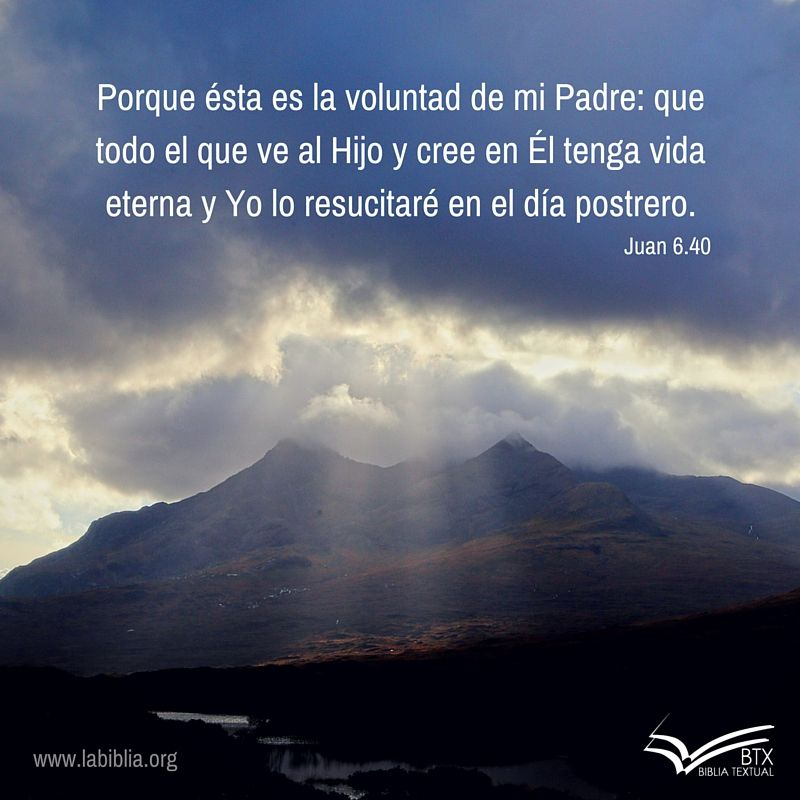 Juan 6 40 Btx Iv Ed Sagrada Biblia Biblia Palabra De Vida