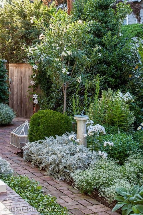 In summer, this white border is at its peak with a showstopping ...