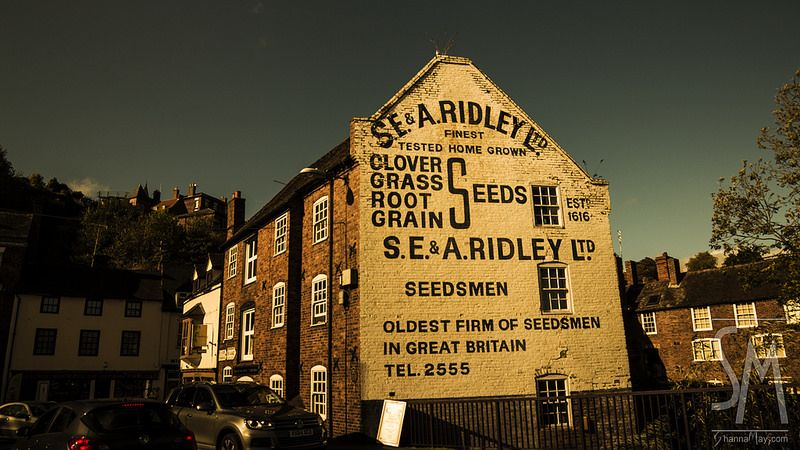 Oldest firm of seedsmen in Great Britain.  My photos. www.ShannaMay.com https://www.flickr.com/photos/itsshannamay/