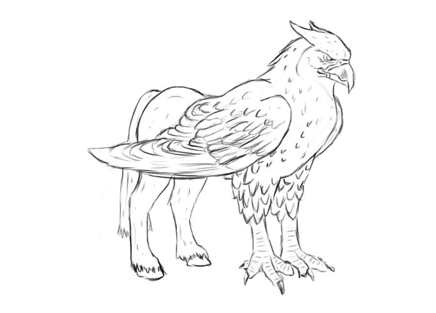 coloring pages buckbeak - photo#1