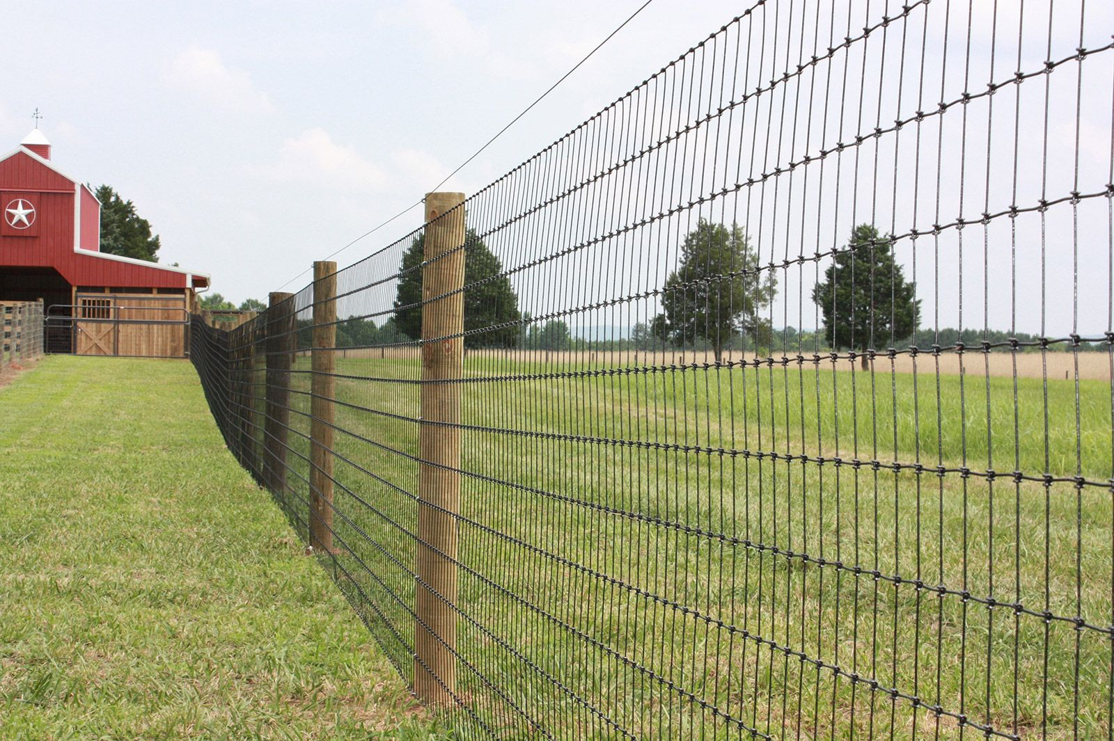 Non climb field fence animal fencing pinterest field fence field fence baanklon Image collections