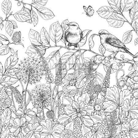 Wiese Blumen Hand Floralen Elementen Gezeichnet Schwarze Und Weisse Blumen Pflanzen Schmetterlinge Und Zwe Blumen Zeichnung Wenn Du Mal Buch Blumenzeichnung