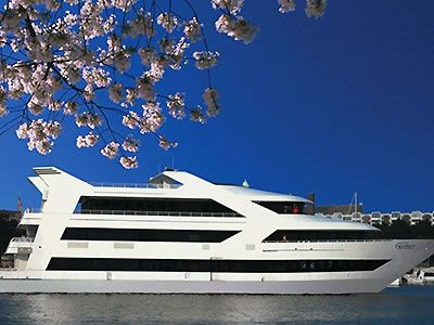 Spirit Of Washington Cruises Dc Wedding Venue Rehearsal Dinner Locations In 20024