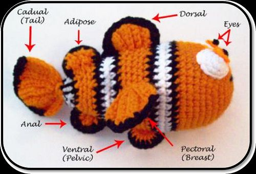 Clown Fish pattern by Jessica Woofter | Crochet projects