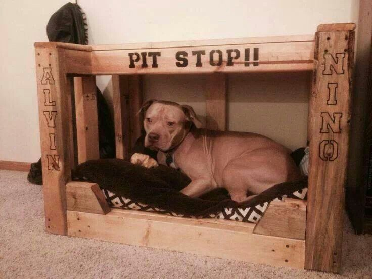 Pitbull dog bed