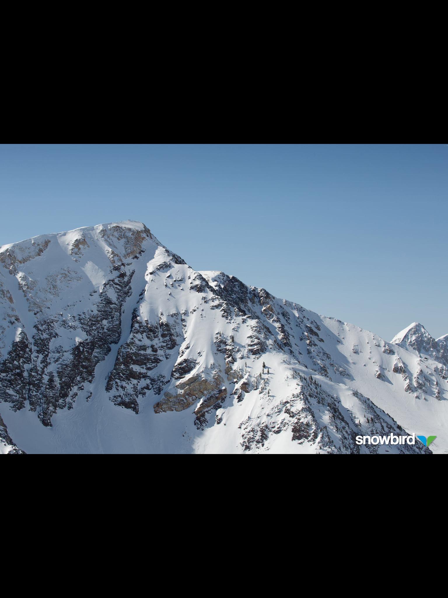Dream Ride Downhill Bike Snowboarding Bmx