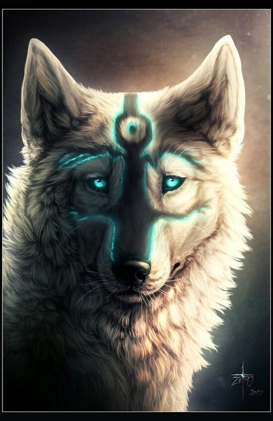 The Mark On Its Face Is Pretty Cool White Wolf Marked Wolf In
