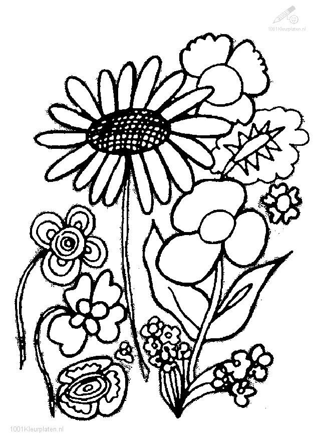 1001 Coloringpages Plants Flowers Flower Coloring Page Flower Coloring Pages Printable Flower Coloring Pages Tree Coloring Page