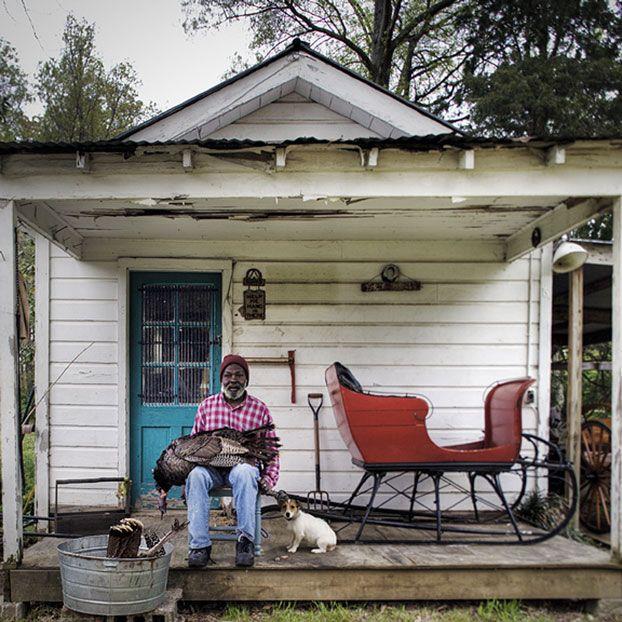 Southern Charm Dog Garden Dog Photograph Southern Porches