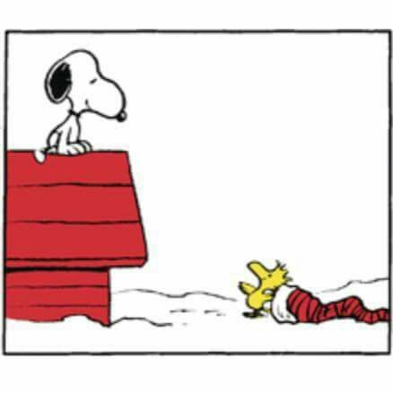 Snoopy Sitting On Top Of The Doghouse With Woodstock Sitting On