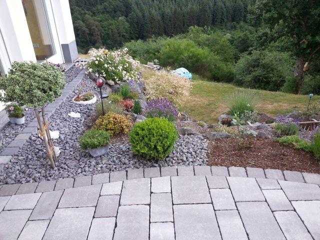 Beet Mit Pflanzen Und SteinenGartengestaltung Mit Steinen  Best