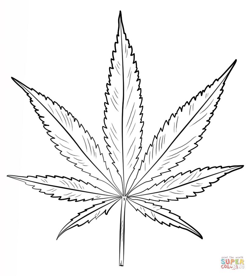 Resultat De Recherche D Images Pour Cannabis Coloriage Idee Tee