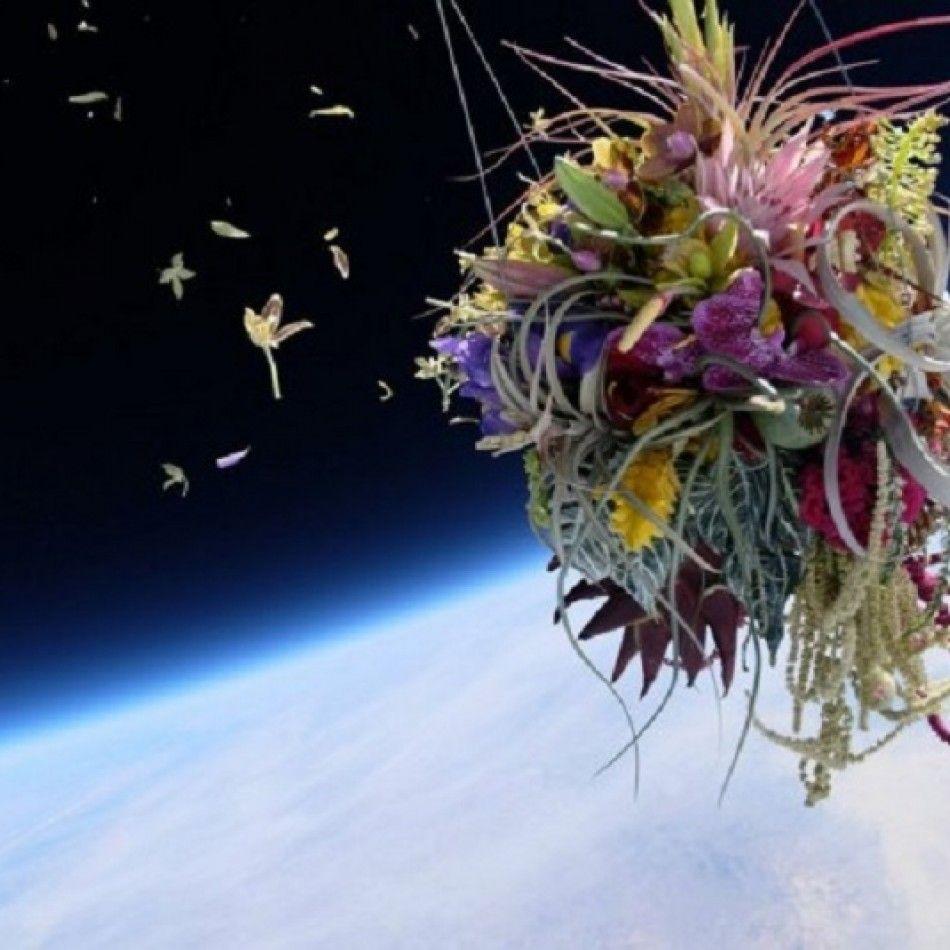 Azuma Makoto :  Des fleurs dans l'espace avec Exbiotanica