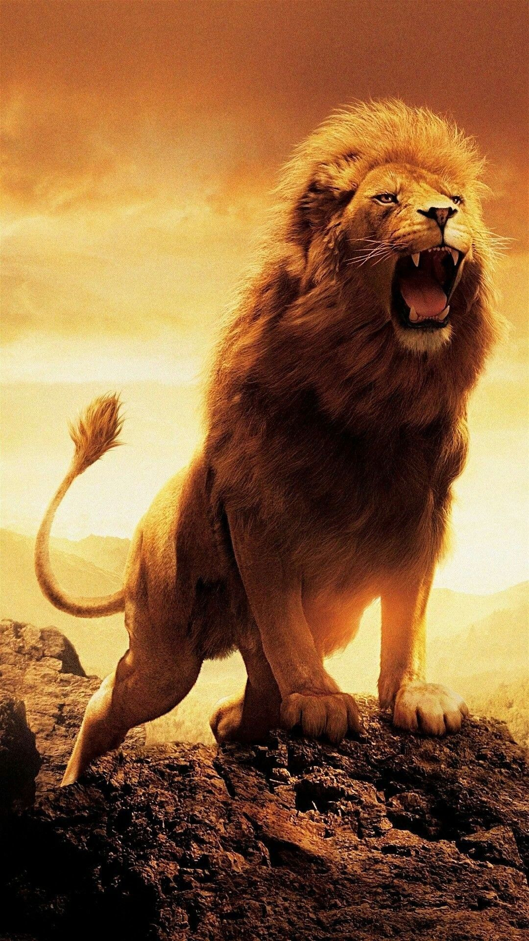 Leão em inglês