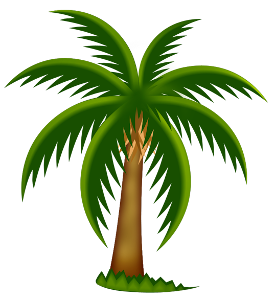 27++ Palm tree png clipart ideas in 2021