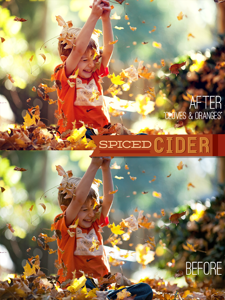 Spiced Cider Photoshop Actions from Bellevue Avenue #autumn #fall #CS6 #CS