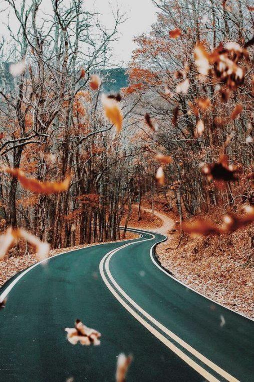 Autumn Vibes Journal Jolies Momes Fond Ecran Gratuit Paysage Fond D Ecran Colore Fond D Automne