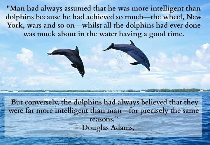 Dolphins, Douglas Adams. So long and thanks for all the fish